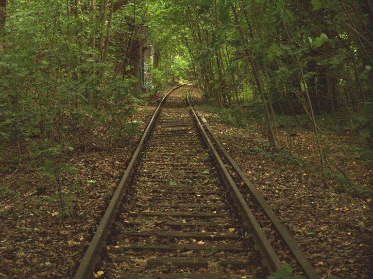 Ehemalige Stammbahn kurz vor Zehlendorf (Foto: Christian Liebscher / CC BY-SA 3.0)
