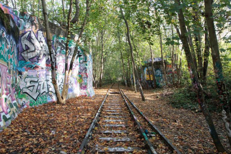 Alte Gleise der Potsdamer Stammbahn, Foto: VBB